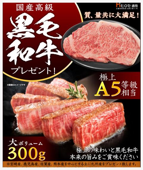 黒毛和牛(ヒロセ通商キャンペーン)